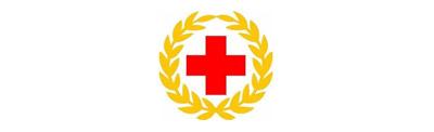 263解决方案-中国红十字会援外医疗队